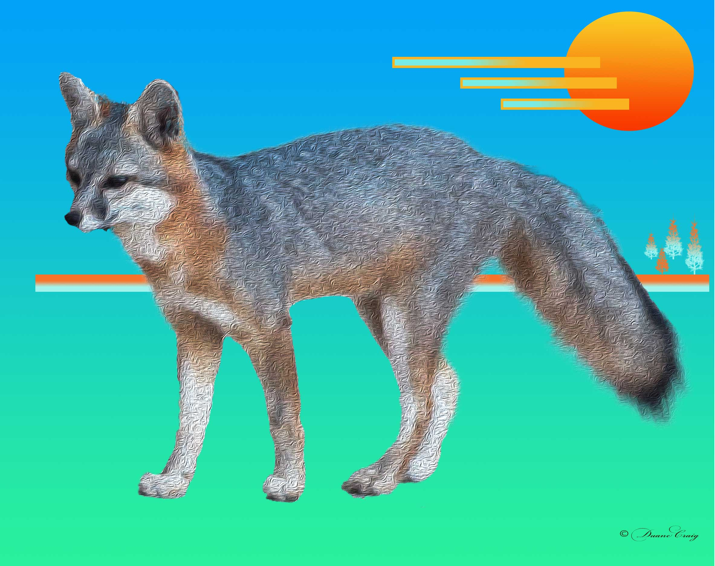 Fox Product Art Nature